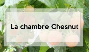 chambre-chesnut