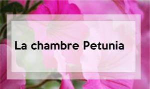 chambre-petunia